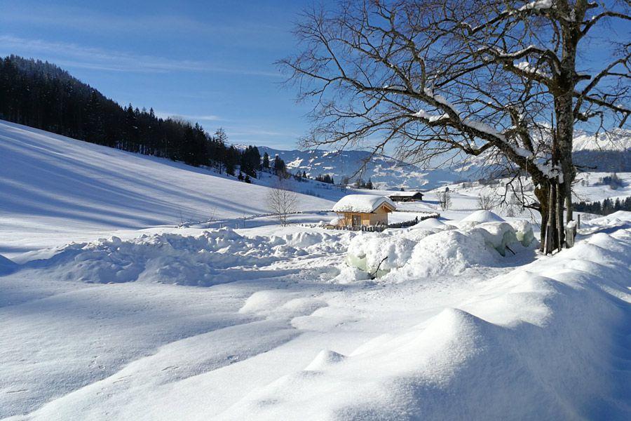 Urlaub in Maria Alm am Hochknig - Hier wohnt das Glck